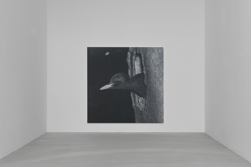 002_Installation view_Rudolf Stingel_Davies Street_London_04 Nov-18 Dec ...