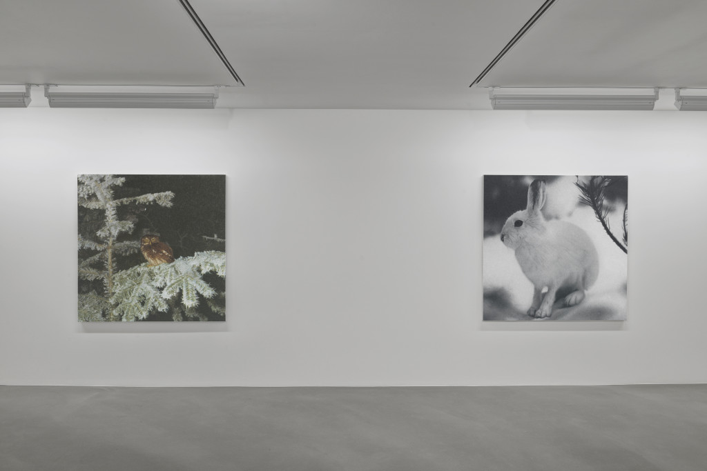 005_Installation view_Rudolf Stingel_Davies Street_London_04 Nov-18 Dec ...