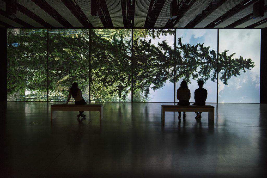 Eija-Liisa Ahtila, Horizontal - Vaakasuora, 2011, at Among the Trees, Hayward Gallery, 2020. © Crystal Eye, Helsinki, 2020. Courtesy of Hayward Gallery. Photo: Linda Nylind