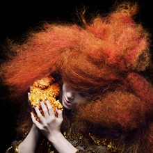 20130129 164554 Björk launches KickStarter to support BIOPHILIA Project