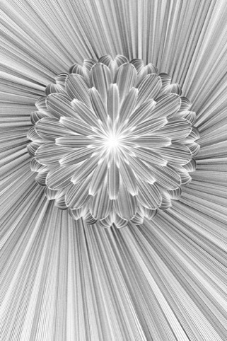 20130220-165049.jpg