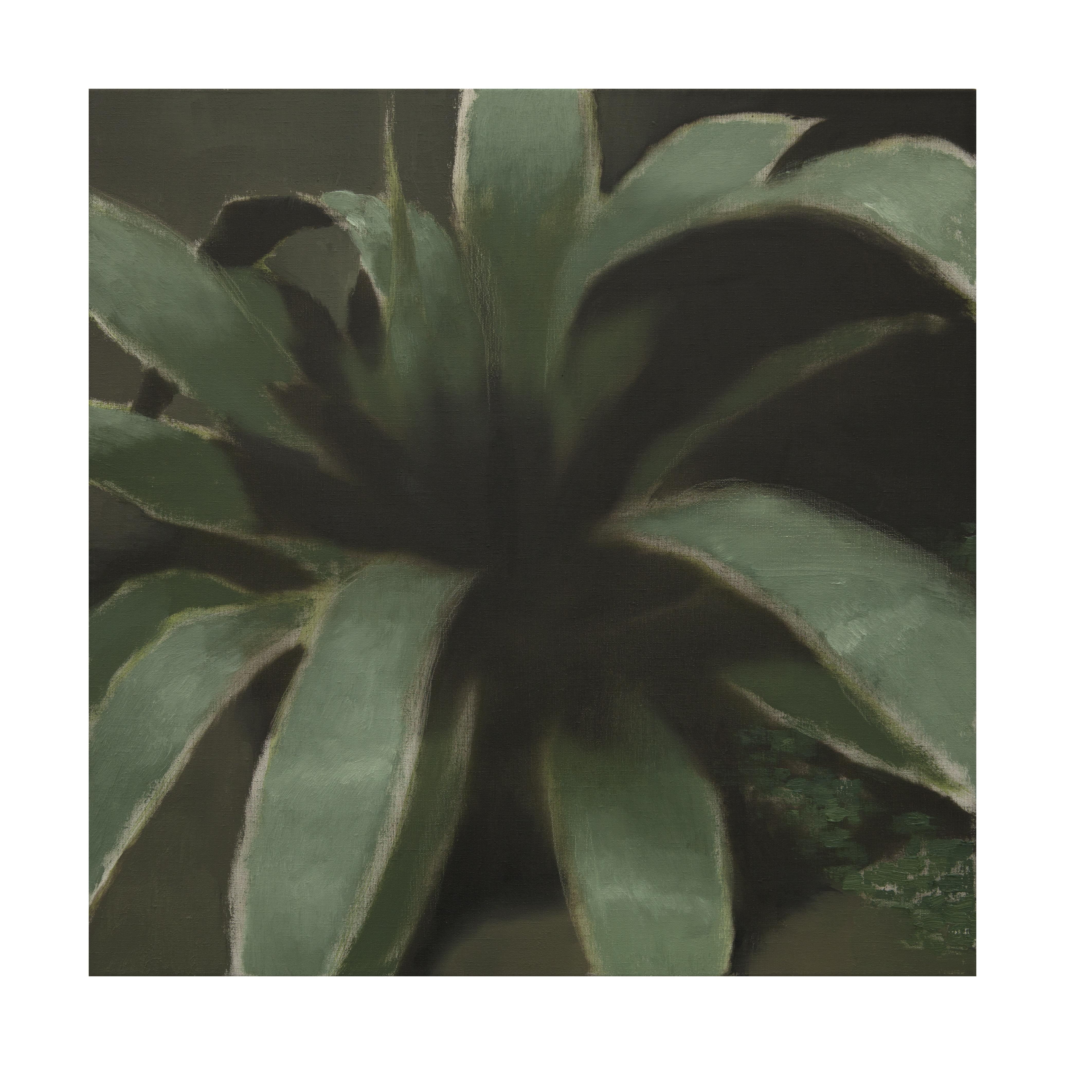 22-plant-ii