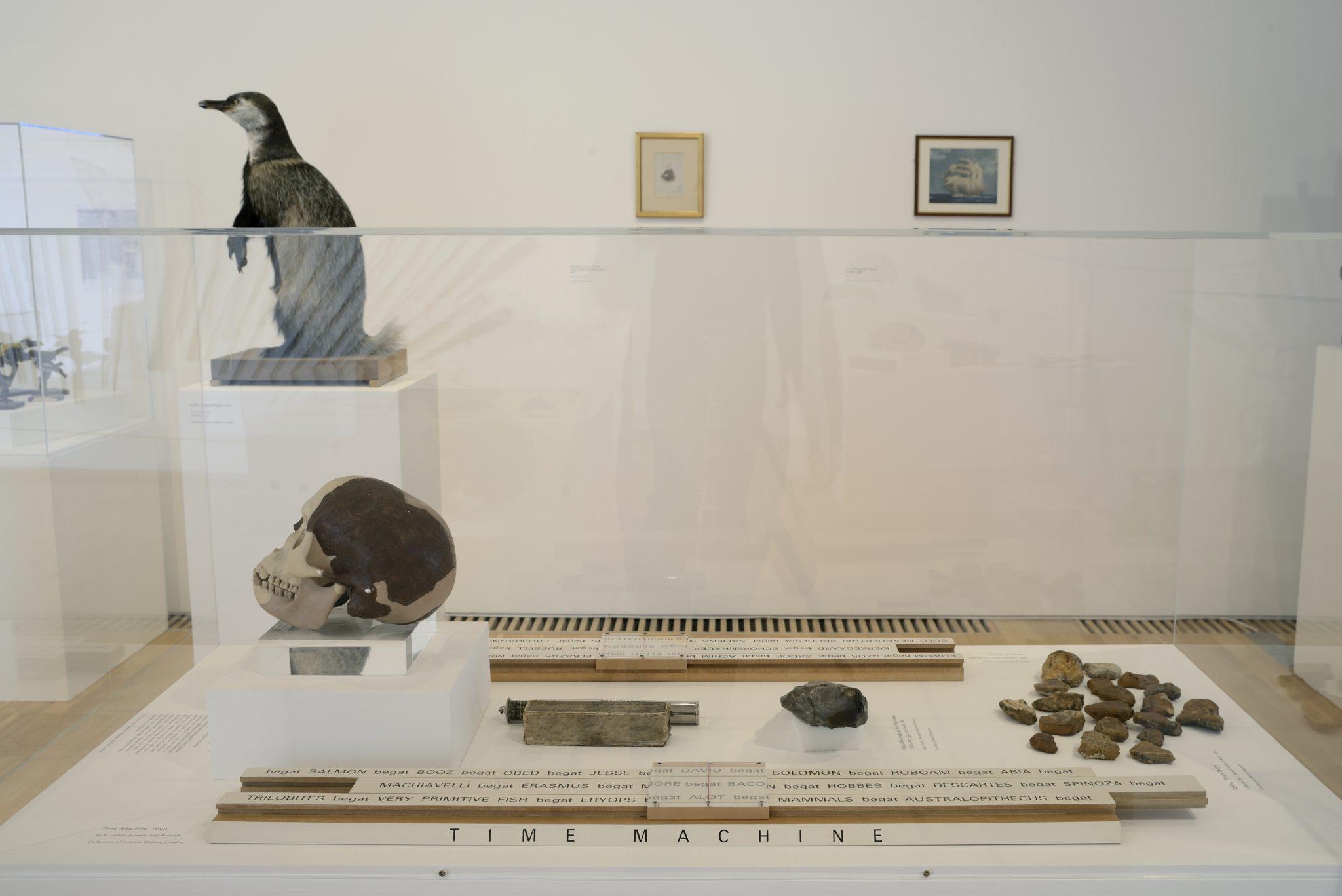 Installation shot of Simon Patterson: Safari: an exhibition as expedition. Photo: Nigel Green. Courtesy De La Warr Pavilion