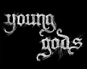 71331_YG_logo