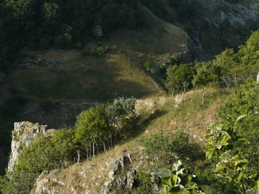 Cheddar Gorge_Final_72dpi