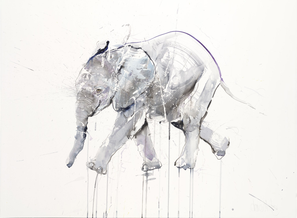 DW ELEPHANT ON PAPER