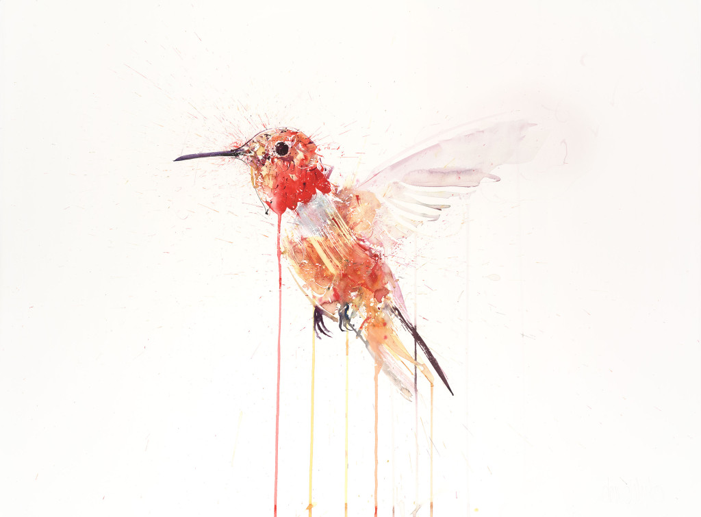 DW HUMMING BIRD PAPER OCT 2015