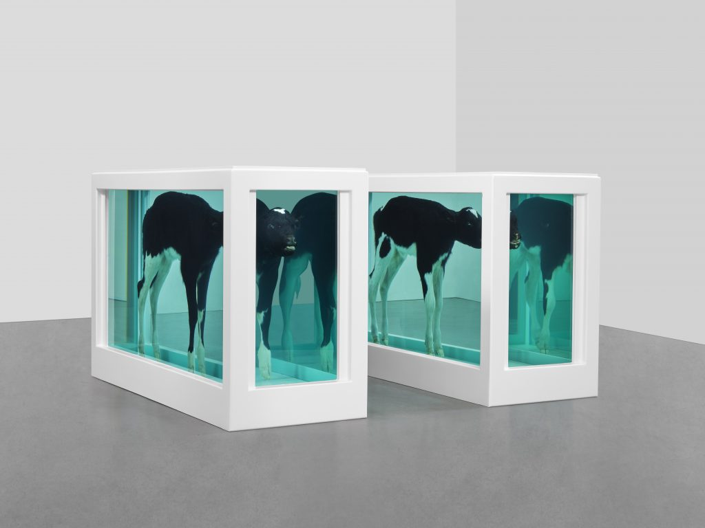 Damien Hirst, Cain and Abel, 1994. Photographed by Prudence Cuming Associates ©Damien Hirst and Science Ltd. All rights reserved, DACS 2021