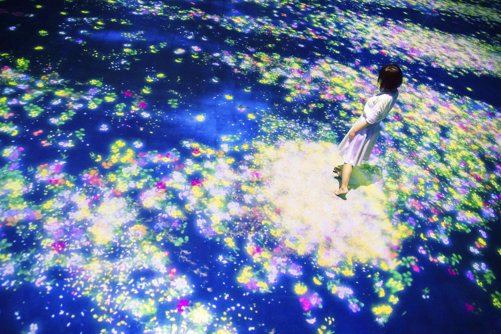 Flowers-and-People,-Cannot-be-Controlled-but-Live-Together_Courtesy TeamLab