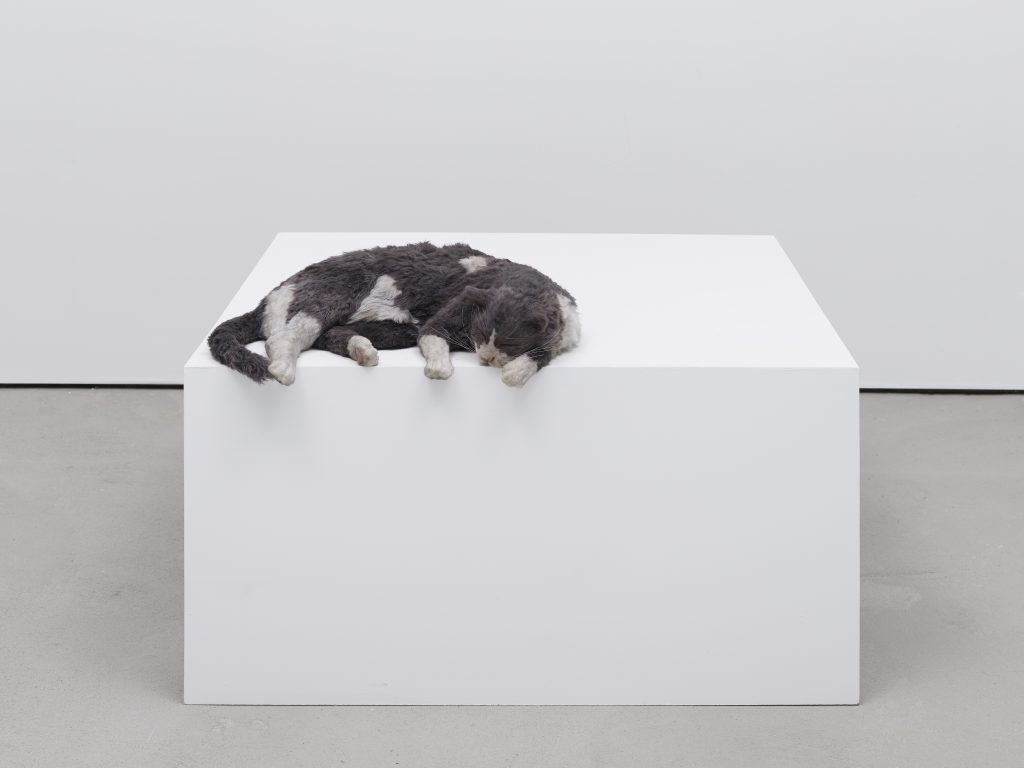 Ryan Gander?The fallout of being present, or The squatters (Socks meet Hammons' Untitled (Night Train) (1989)), 2020?Wood, latex, resin, synthetic fur, paint, animatronics?10.2 x 50.8 x 34.3 cm?4 x 20 x 13 1/2 in © Ryan Gander. Courtesy Lisson Gallery