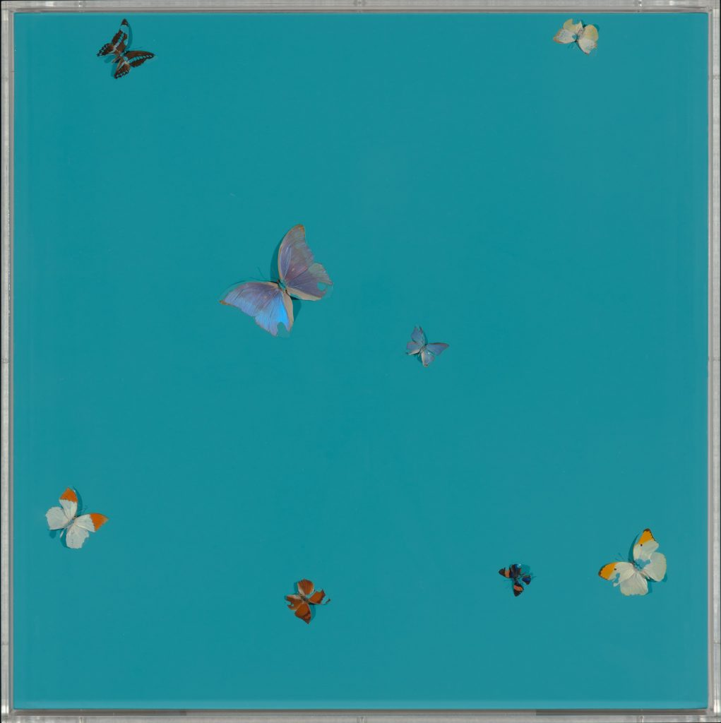 Damien Hirst, Bognor Blue (2008). ©Damien Hirst and Science Ltd. All rights reserved, DACS 2018. Courtesy Pallant House Gallery