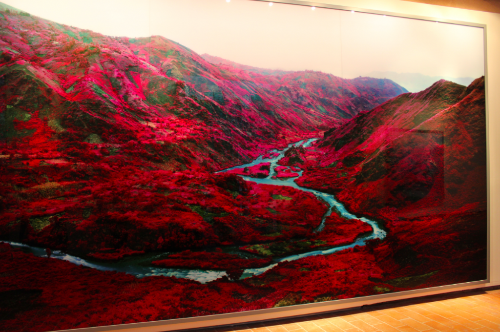"Ireland Mosse1 1024x680 VIDEO: Richard Mosse ""The Enclave"""