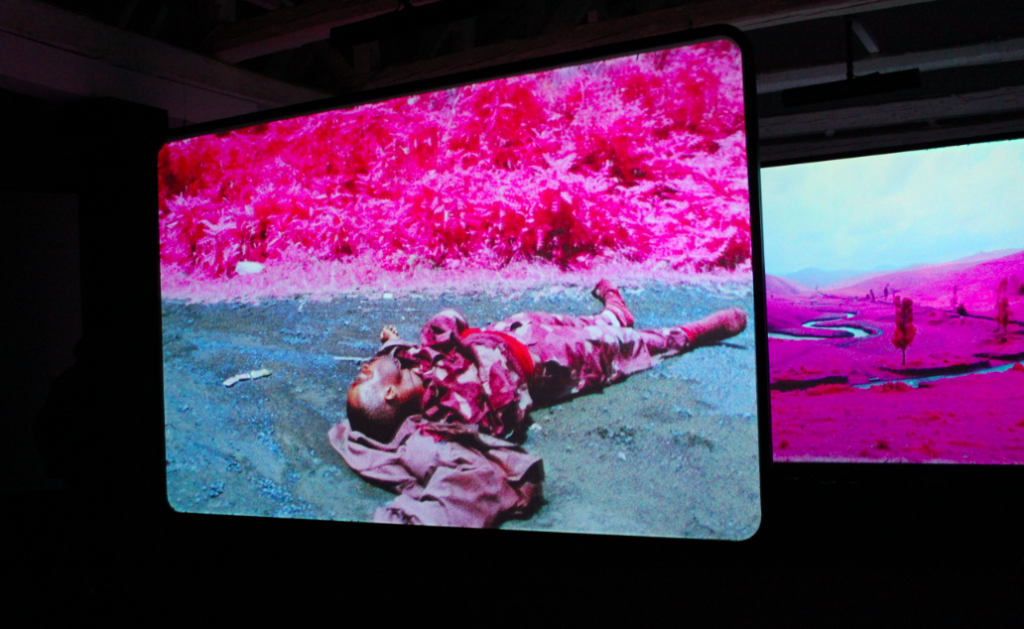 "Ireland Mosse2 1024x629 VIDEO: Richard Mosse ""The Enclave"""