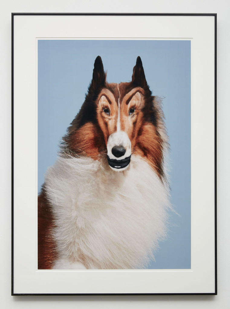 JWA_24505_Reconstructed_Lassie_framed