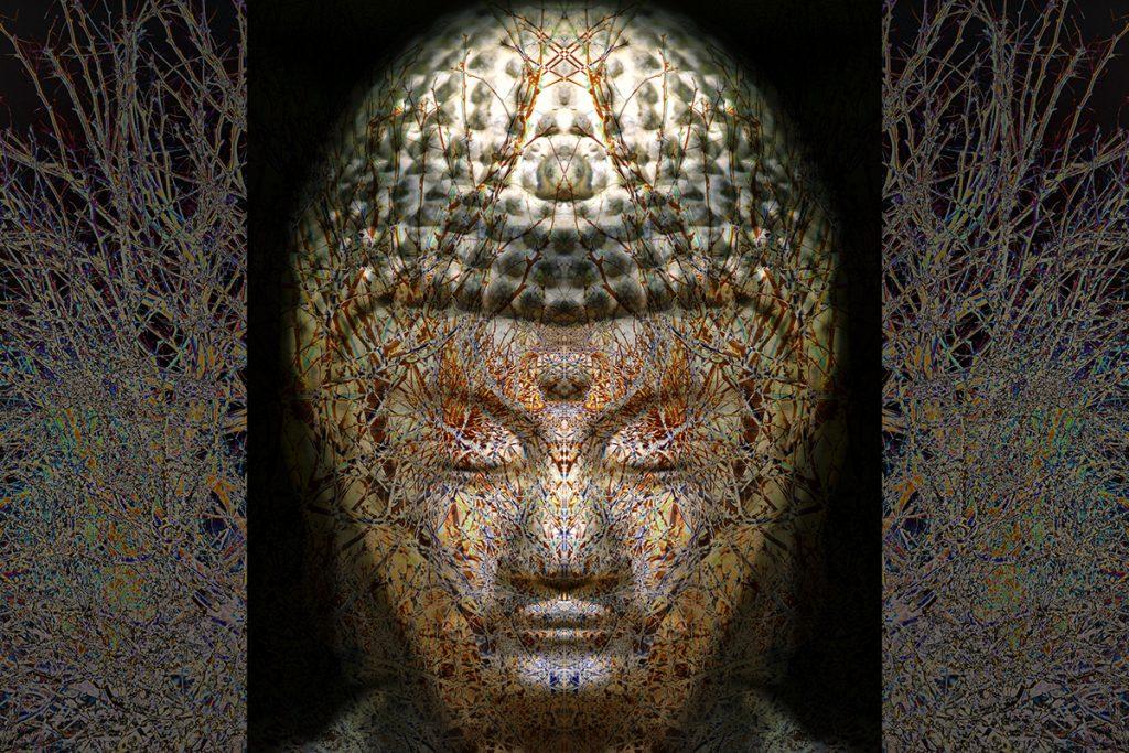 James Stanford, Budding Buddha 3