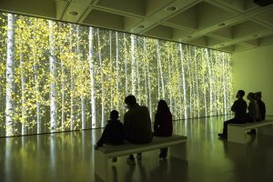 Among the Trees at Hayward Gallery. Photo by Linda Nylind. 29/2/2020.