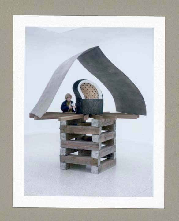 Martin Puryear Pavilion Of US copy