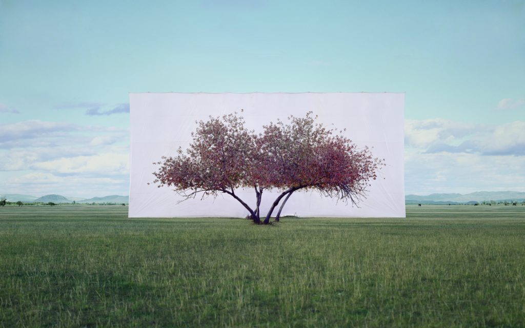 Myoung Ho Lee Tree... #2, 2012 Ink on Paper 104 x 152 cm © the artist 2020 Courtesy Myoung Ho Lee and Gallery Hyundai