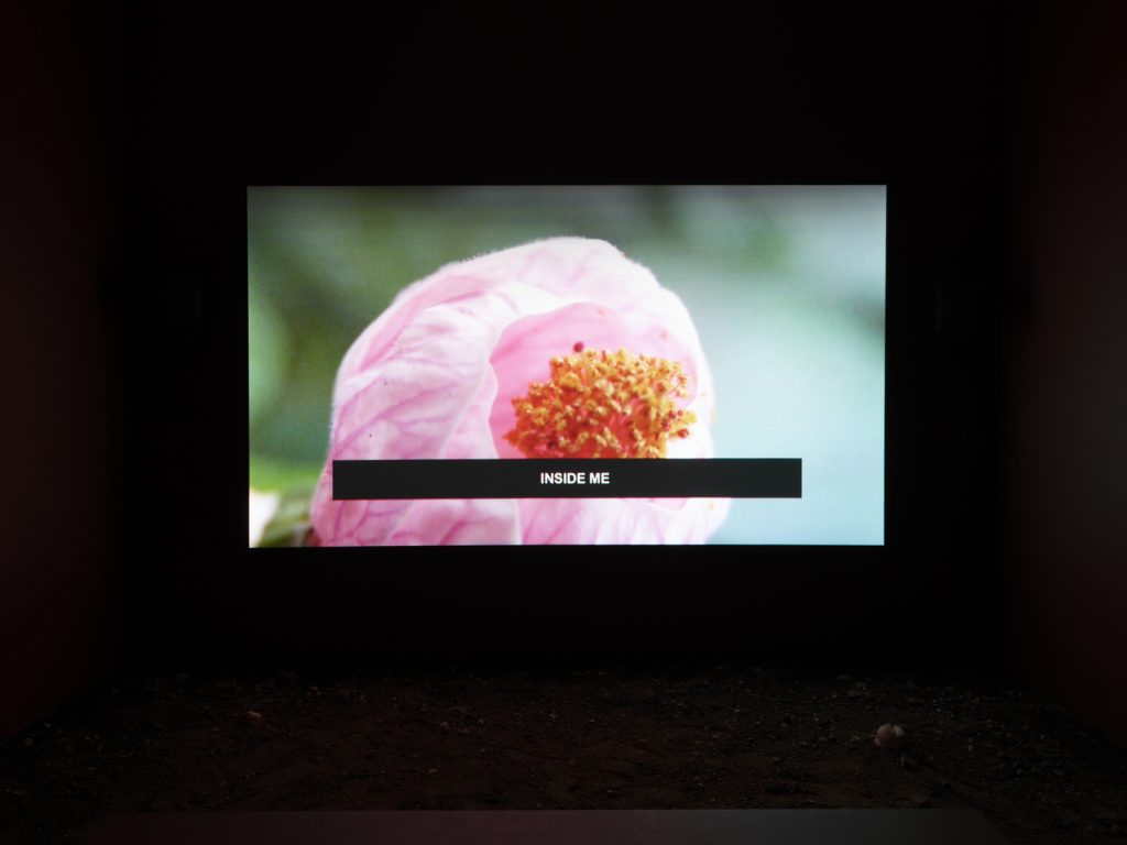 Laure Prouvost, Into All That Is Here, 2015 (still). HD video, sound, color; 9:42 min. © Laure Prouvost. Courtesy Lisson Gallery. Photo: Elisabeth Bernstein