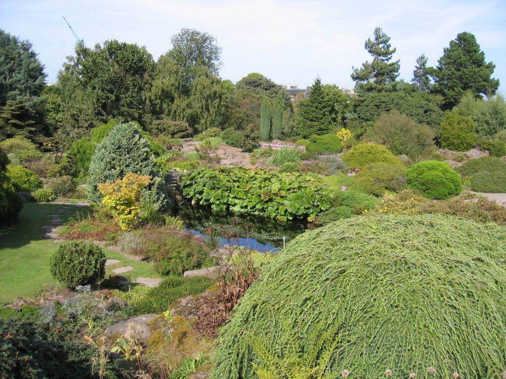 FAD MAGAZINE Royal Botanic Garden Edinburgh rockgarden