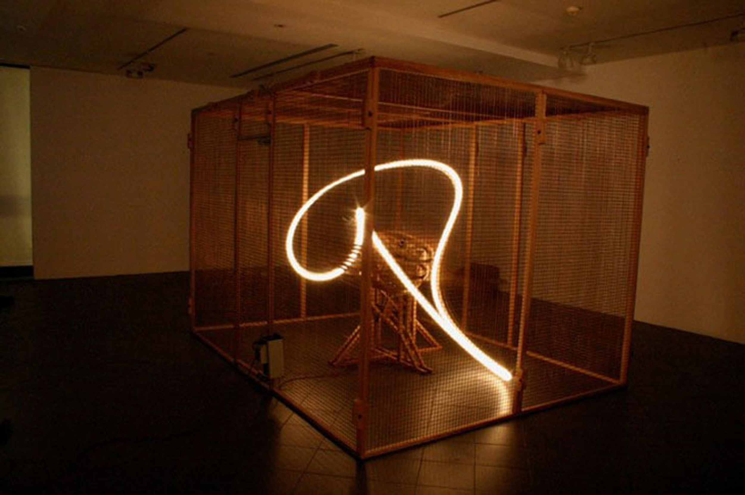 SHAWCROSS, CONRAD, Light Perpetual, 2004