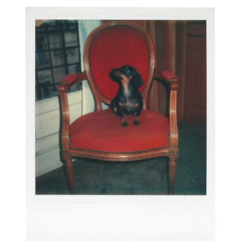 ANDY WARHOL (1928-1987) Archie unique polaroid print 4¼ x 3½ in. (10.8 x 8.9 cm.) Executed in 1972.