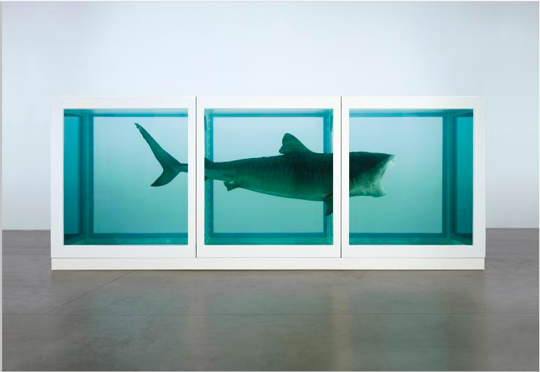 The Physical Impossibility of Death in the Mind of Someone Living 1991 2170 x 5420 x 1800 mm | 85.5 x 213.4 x 70.9 in Glass, painted steel, silicone, monofilament, shark and formaldehyde solution Formaldehyde Image: Photographed by Prudence Cuming Associates © Damien Hirst and Science Ltd. All rights reserved, DACS 2012