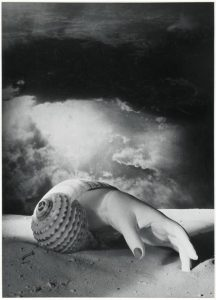 'Untitled' (Hand-Shell), Dora Maar, 1934, Courtesy of Tate