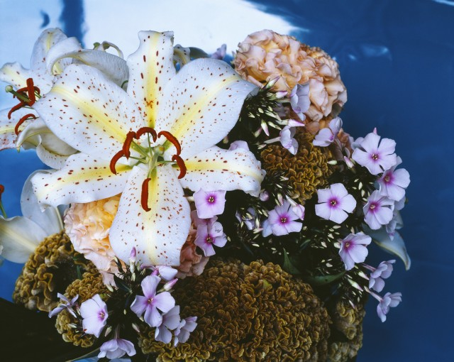 araki-flower
