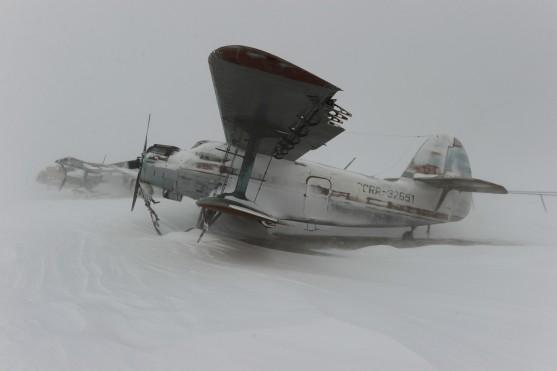 calvert-33
