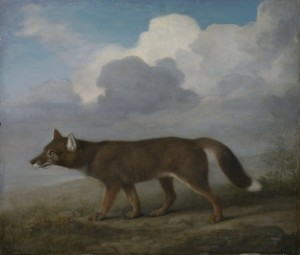 Portrait of a large dog (Dingo) 1772 by George Stubbs. ZBA5755