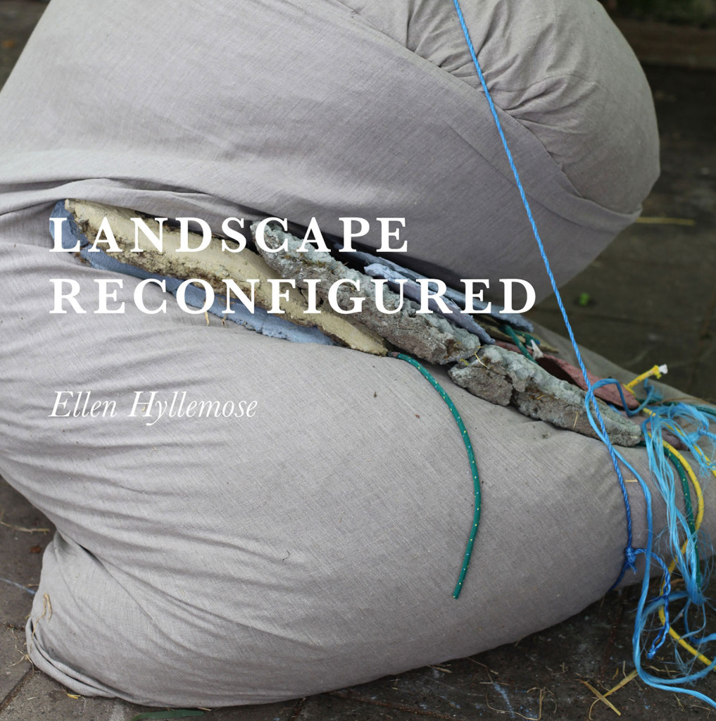 exhibition-landscape-reconfigured