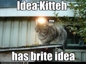 idea-cat