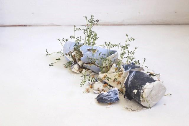 Ramona Zoladek has won The Elephant x Griffin Art Prize 2018