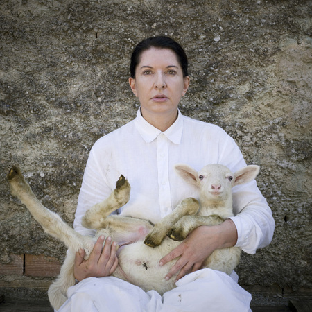 Controversial performance artist Marina Abramovic hit over the head at book signing