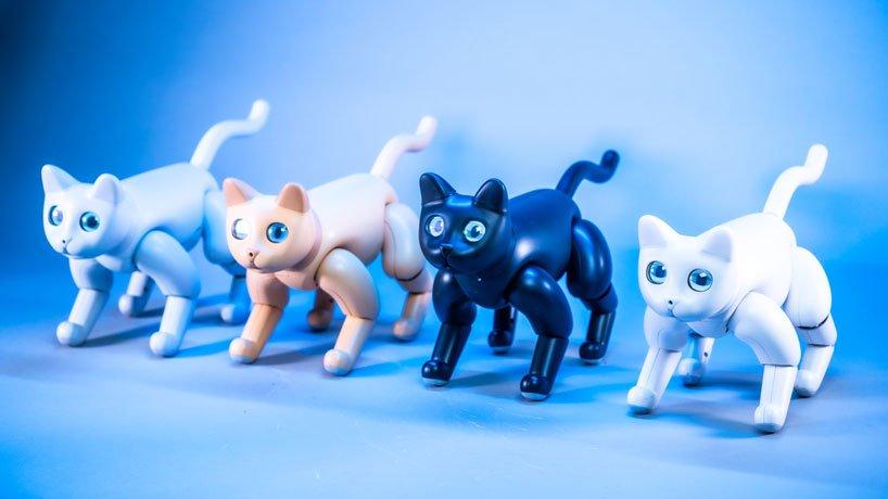 We Love Marscat the robotic cat