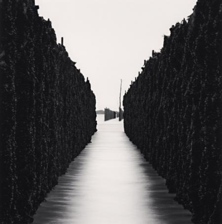 Copyright Michael Kenna