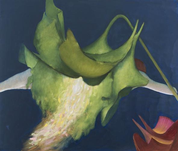 tanning-floribunda