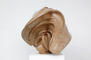 Tony Cragg Willow, 2014. © Tony Cragg; Courtesy Lisson Gallery. Photography Michael Richter