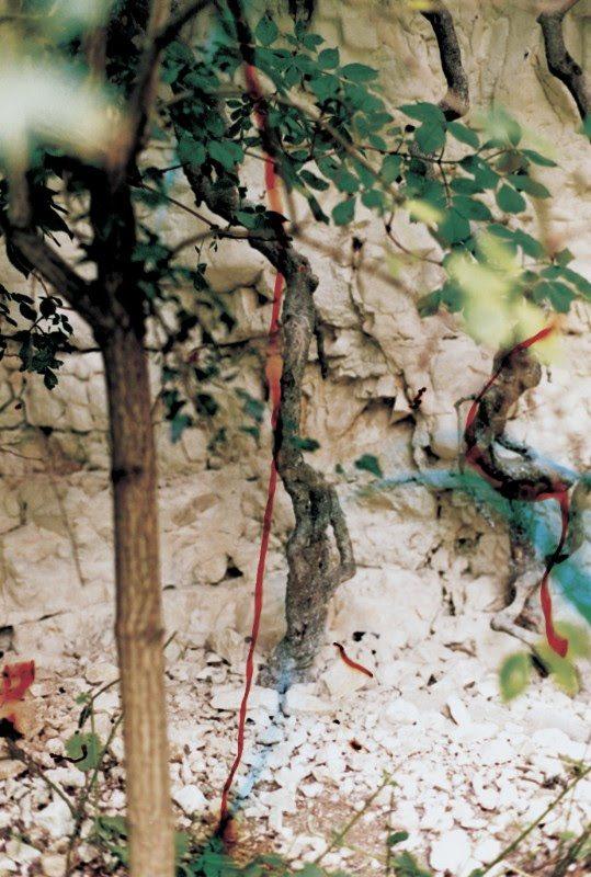 image: Quarry II, 2001