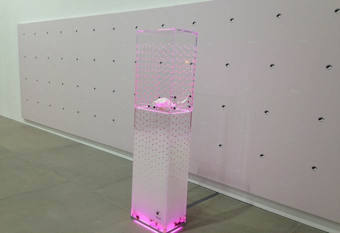 Timur Si-Qin Premier Machinic Funerary X: PEACE Step and Repeat 2014 UV print on pink canvas 200 x 600 cm / (78¾ x 236¼ in)