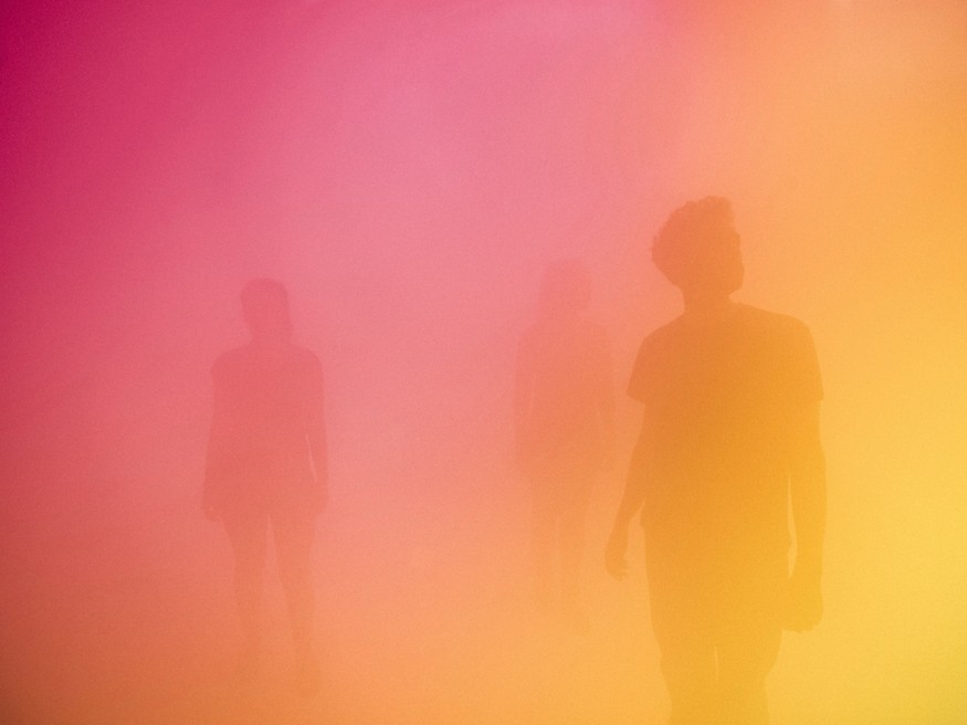 C0124383 States of Mind: Ann Veronica Janssens.
